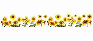 WallPops! Sunflowers Border Wall Decal & Reviews Wayfair