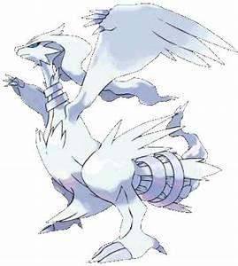 Reshiram - Pokémon Wiki - Neoseeker