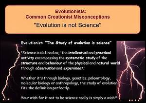 Unmasking Mistakes In Memes Of Evolution