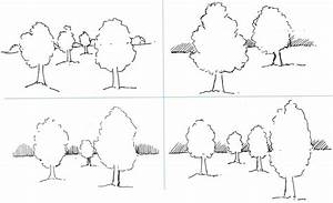 Drawing Outline Of Trees And Landscapes With Trees