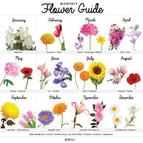 visual guide  wedding flowers  month wedding