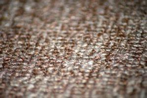 Comment Tuer Les Puces : tapis alarme alzheimer terre ~ Farleysfitness.com Idées de Décoration