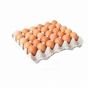 brown eggs 24 indianmarket nj