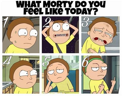 Rick And Morty Meme - 1335 best rick and morty superjail images on pinterest felicia rooster teeth and fan art