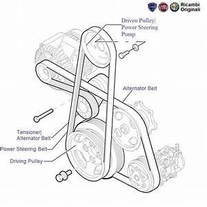 Fiat Punto 1 3 Mjd  Auxiliary Belts  U0026 Pulleys
