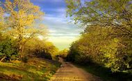 Spring Desktop Country Roads
