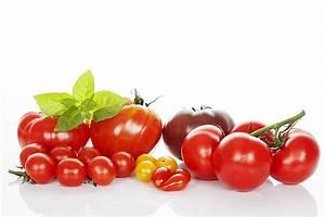 Tomaten Krankheiten Bilder : tomate ~ Frokenaadalensverden.com Haus und Dekorationen