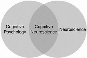 1  Relationships Between The Fields Of Cognitive