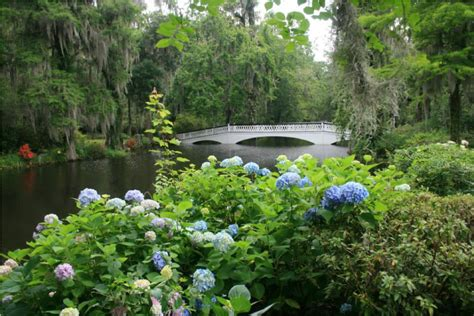 Garden South Style by Style Gardens At Magnolia Plantation And Gardens