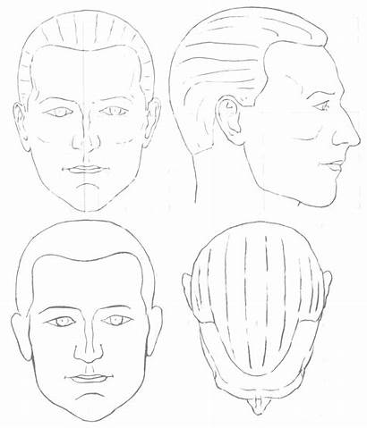 Male Blank Face Head Chart Makeup Charts