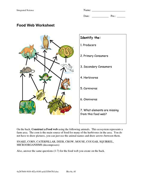 food web worksheets food web worksheet doc