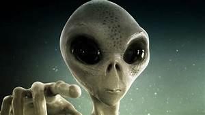 Wie Sehen Kakerlaken Aus : wissenschaftler vermuten aliens sehen aus wie wir ~ Watch28wear.com Haus und Dekorationen
