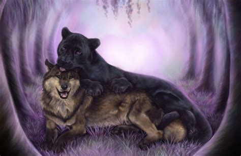 Panther Animal Wallpaper - wolf black animal panther wallpaper 1998x1299