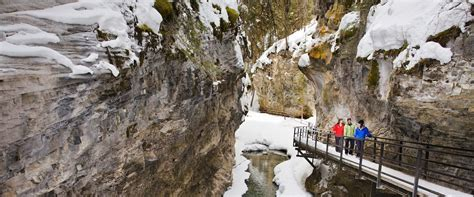 Johnston Canyon Icewalk® - Discover Banff Tours