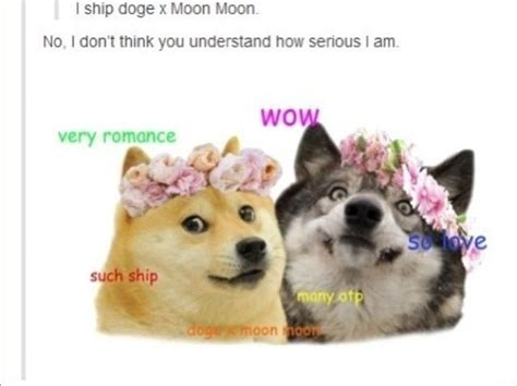 Best 25+ Doge Meme Ideas On Pinterest
