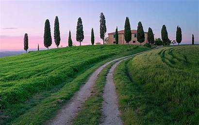 Scenery Italy Italian Tuscany Landscape Trees Grass