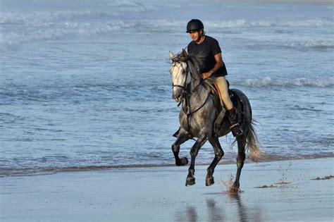 urlaub mit eigenem pferd teil ii die schoensten ziele