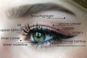 Makeup 101  Eyeshadow Diagram For Makeup Newbies