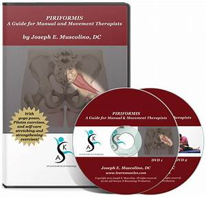 Piriformis  U2013 A Guide For Manual  U0026 Movement Therapists