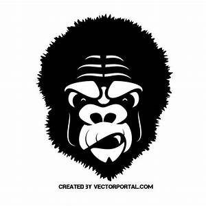 Gorilla Vector Art images