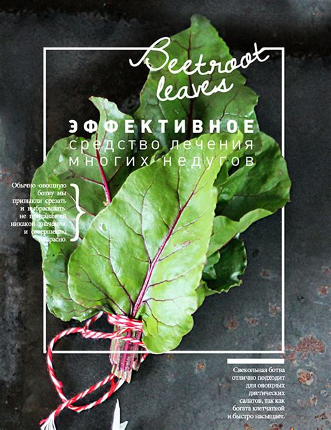 posters cuisine food posters on behance