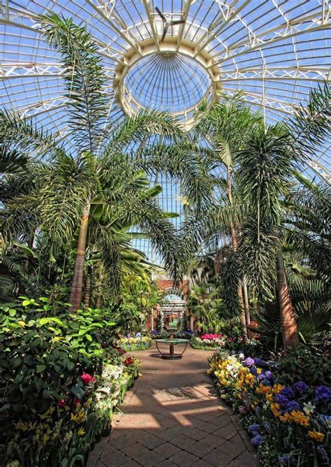 botanical gardens buffalo 17 best images about buffalo new york on