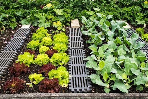 Gemüsebeet Richtig Anlegen by Beet Anlegen Die Kunst Der Gartengestaltung Boni Shop24 De