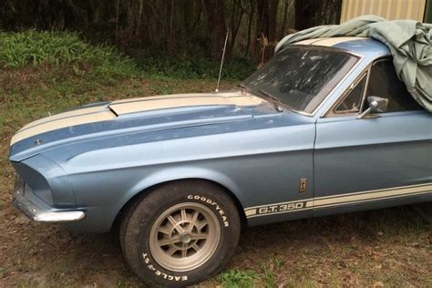 One Owner 1967 Shelby Gt350
