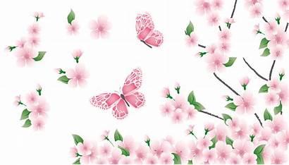 Butterflies Flowers Flower Spring Clipart Branch Butterfly