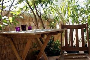 Bamboo balcony privacy screen – ideas with plants, carpets
