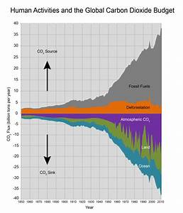Human Activities And The Global Carbon Dioxide Budget