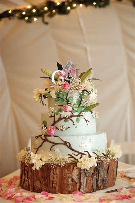 light blue wedding cake  vines  flowers