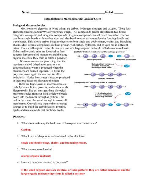 Building Macromolecules Worksheet Answers Livinghealthybulletin