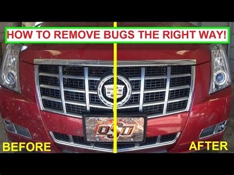 how to clean bugs a car the right way to clean bug guts easy guaranteed results