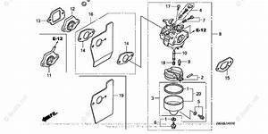 Honda Small Engine Parts Gcv160 Oem Parts Diagram For