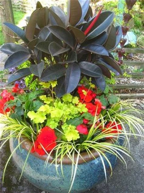 tips  creating  container garden   shaded area