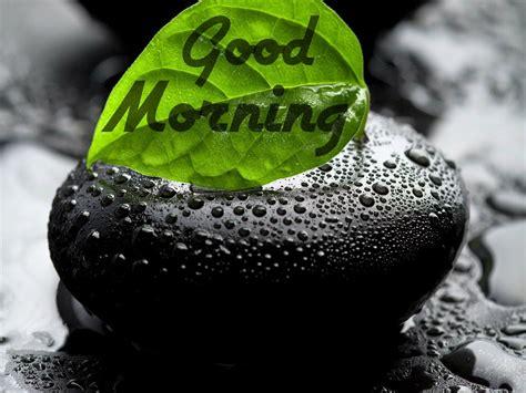 images  gud morning good morning  festival chaska
