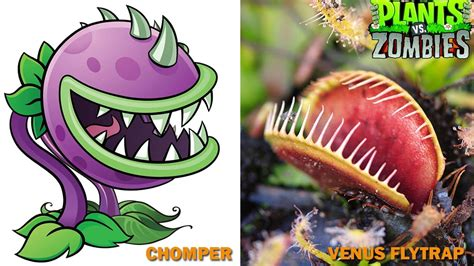 plants vs zombies characters in real
