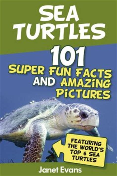 Sea Turtles  101 Super Fun Facts And Amazing Pictures