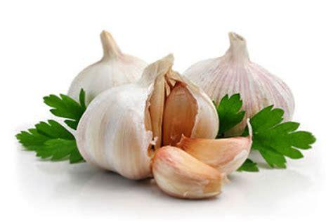 Tips Kandungan 6 Bulan Manfaat Bawang Putih Untuk Kesehatan Tubuh Vebma Com