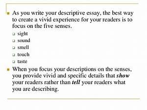 Five Senses Essay Descriptive Essay Ocean Five Senses Essay Examples   Senses Essay Essay About Science also Custom Writing $10  English Essay Speech