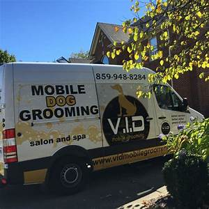 Vid mobile grooming salon and spa in lexington ky 40505 for Dog grooming lexington ky