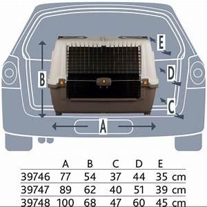 Cage Transport Chien Voiture : cage de transport pour chien sp ciale voiture skudo car ~ Medecine-chirurgie-esthetiques.com Avis de Voitures
