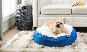 how to choose a pet bed for an older dog overstockcom With dog beds for older dogs