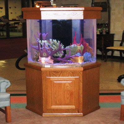 acrylic aquariums tenecor worlds leading aquarium