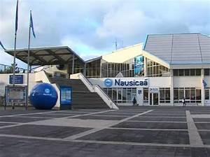 Mandataire Auto Boulogne Sur Mer : acquario nausica luogo di svago a boulogne sur mer ~ Medecine-chirurgie-esthetiques.com Avis de Voitures
