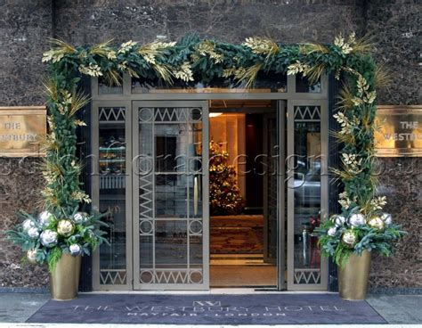 todich floral design unveils     winter