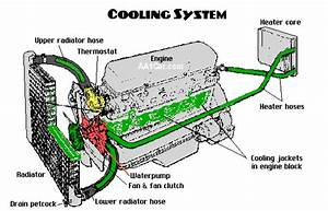 How To Care For Your Car   Engine Cooling System Module