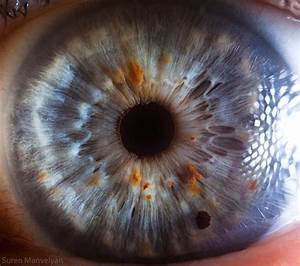 Stunning Macro Photography Shows The Beauty Of The Human Eye