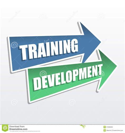 training development  arrows flat design stock